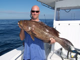 Monster Grouper