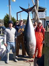 Oak island fishing charter giant bluefin tuna