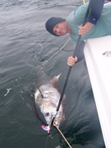 Oak Island NC monster bluefin tuna