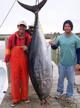 Southport fishing bluefin tuna