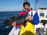 7lb black sea bass of long beach nc