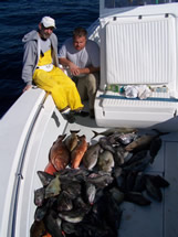 bald head island fishing charters boat load