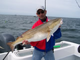 big bald head island red drum