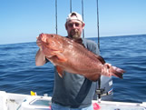 Fat Red Grouper Oak Island NC