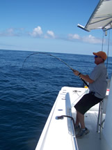 Grouper fishing in May