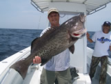 40lb oak island fishing charters gag grouper