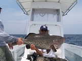 40lb bald head island fishing charters gag grouper