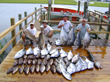 big catch of bald head oak island fishing