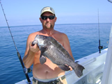 6lb oak island black sea bass
